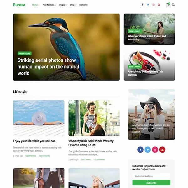 Purosa is a free minimalist WordPress theme.